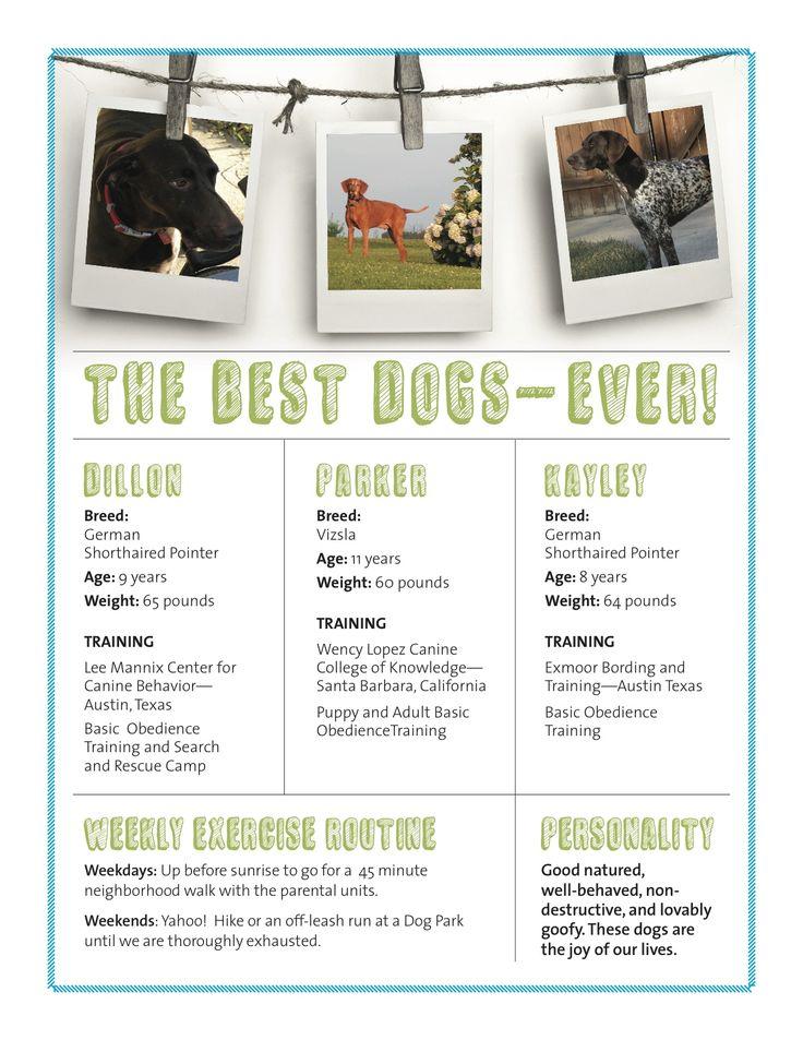 Design Resume Portfolio Tips Examples Skills For Pet Resume Example Pet Resume Designer For Hire