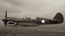 mototerra:    Warhawk..P40.