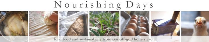 Nourishing Days: Stumbled across this blog while looking for a recipe. I think I'm a little in love. A young mother's account, sometimes painfully honest, of moving to a small, off-grid homestead with her family.