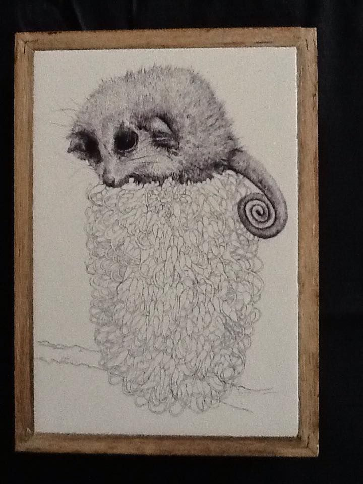 """""""Sitting Pretty"""" pen and ink illustration by Shelley Lee Langdon.  Printed onto stone, using recycled materials. $110"""