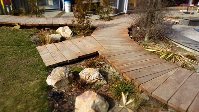 Playground Boardwalk and native plantings.