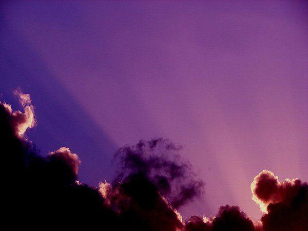 Best 25+ Purple Backgrounds Ideas On Pinterest