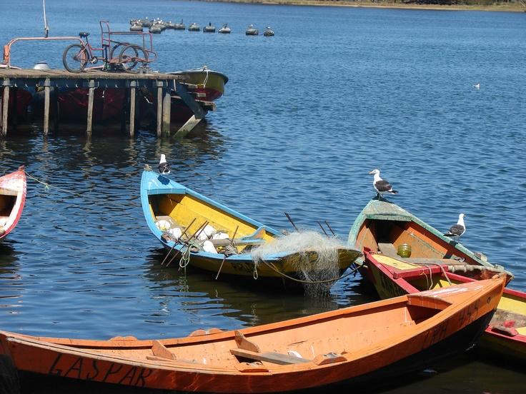 Caleta de Pescadores en Puerto Saavedra