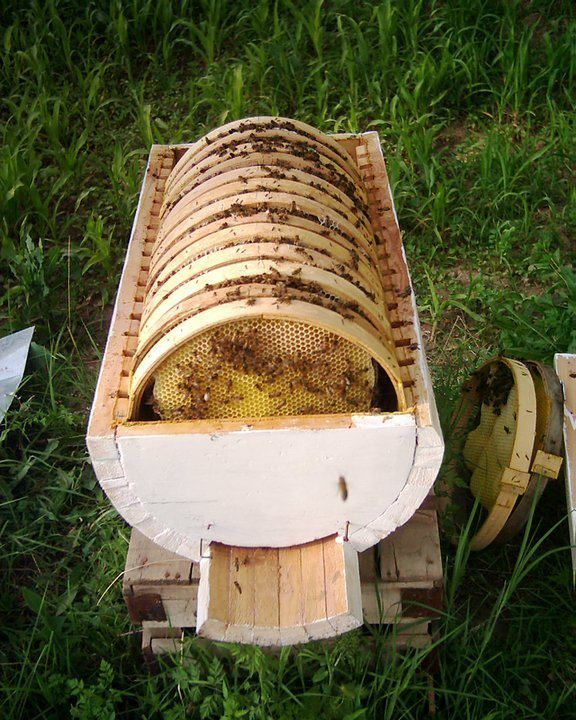 Bee Hive Design Bee keeping