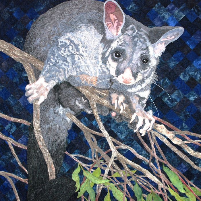Hello Possums!!