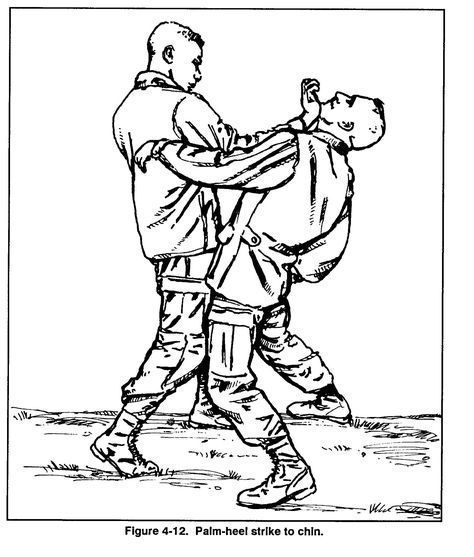 Pin by Paul Gerasimczyk on manuals self defense books
