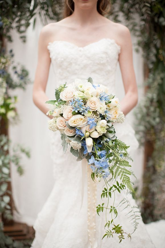 Cascading Bridal Bouquet With Cream Sahara Roses Light Green White Ranunculus Tulips Blue Sweet Pea Foliages