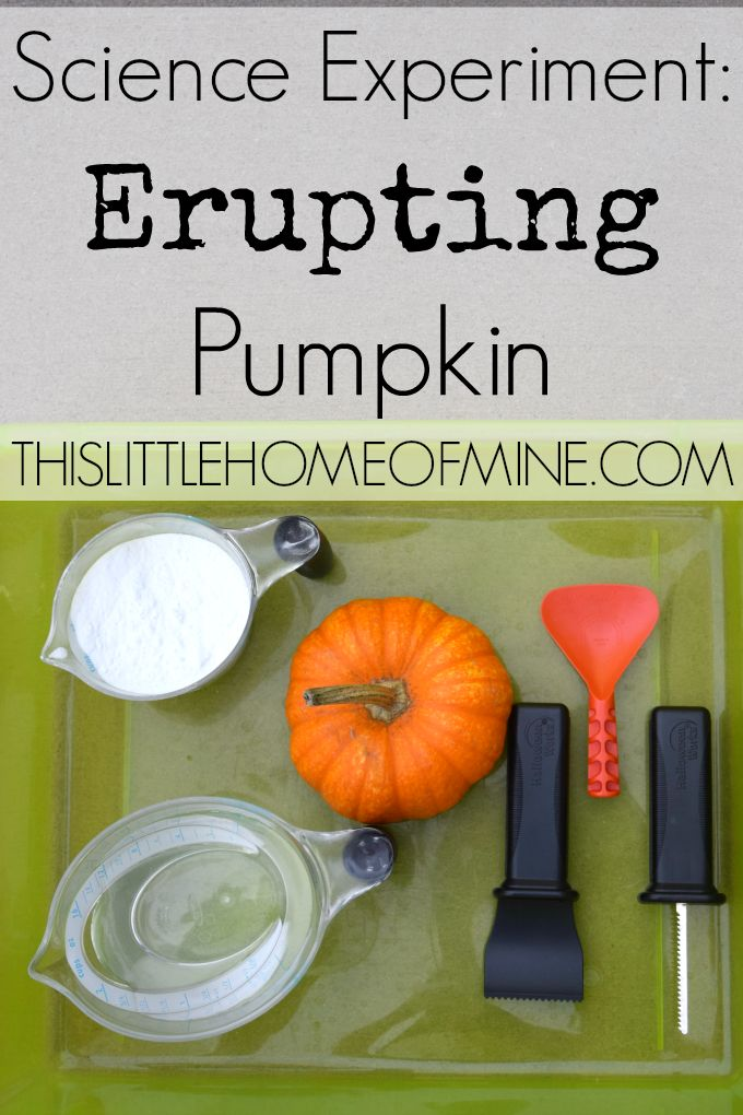 Erupting Pumpkin Science Experiment - This Little Home of Mine