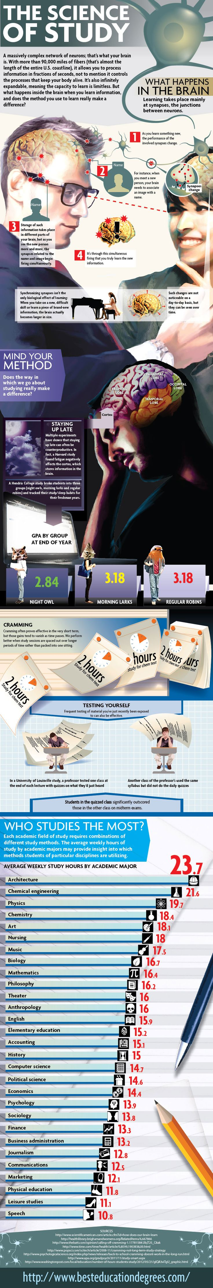 The Science of Study (Infographic) - Fluency21 - Committed Sardine Blog