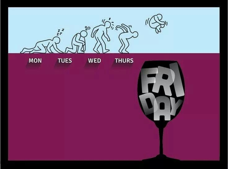 Funny Pictures Of The Day - 58 Pics |Office Friday Wine Humor