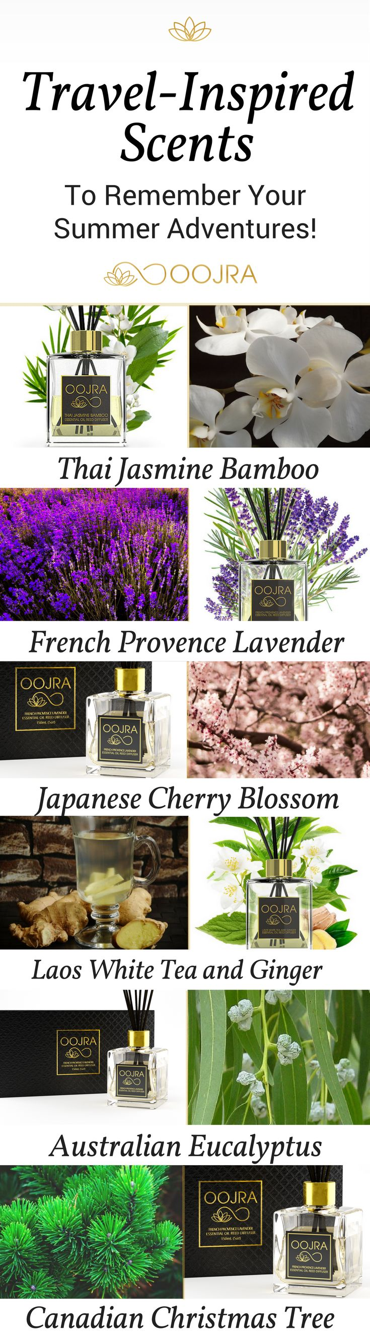 Travel-Inspired Essential Oil Reed Diffusers | Aromatherapy | Jasmine, Lavender, Cherry Blossom, Eucalyptus, Christmas Tree | Thailand, France, Japan, Australia, Canada | Oojra Exotic Home Fragrances: http://oojra.com/?utm_source=pinterest.com&utm_medium=social&utm_campaign=TravelScentsSummer&utm_content=TravelScentsSummerWhite