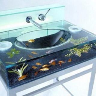 Aquarium madness