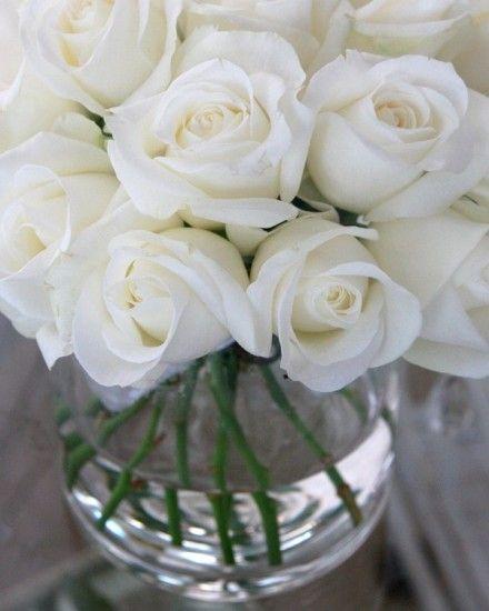 White Roses in a Vase ♥ La Maison des Roses