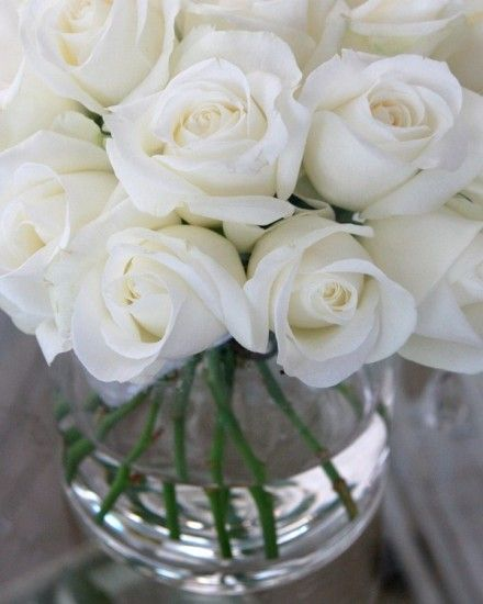 Architecture Decor Flowers | AllThingsWhite | RosamariaGFrangini | White Roses in a Vase, La Maison des Roses                                                                                                                                                     More