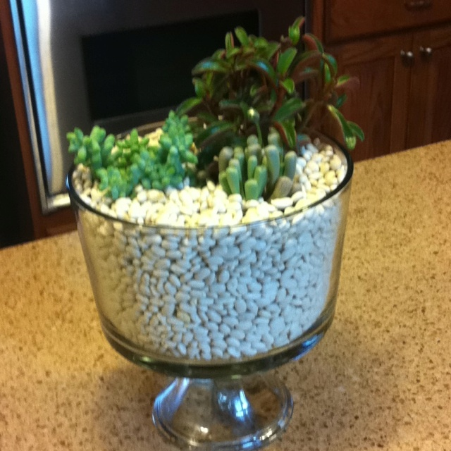 Trifle Bowl Decorations Entrancing 101 Best Trifel With Trifles Images On Pinterest  Floral Inspiration Design