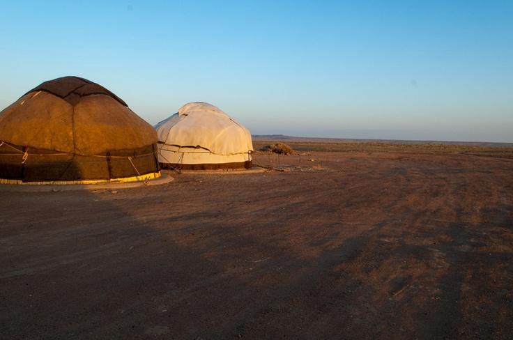 Yurts in the Kyzylkum Desert  Khorezm  UzbekistanKyzylkum Desert