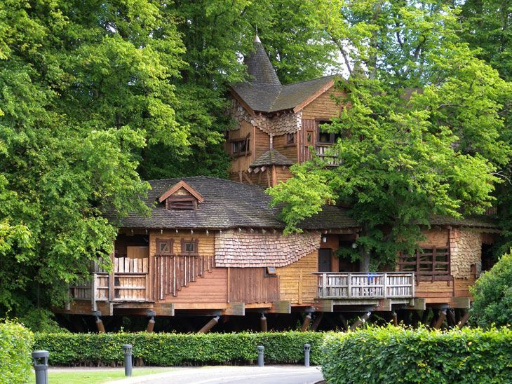 The 10 Coolest Homes In Treetops Via Brit Co Wedding Ideasunusual Venueswedding
