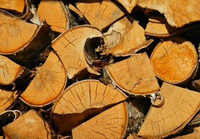 Coldiretti: 'crolla il gas, aumentano le importazioni di legna da ardere'