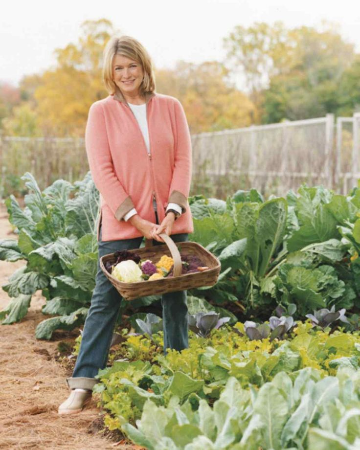 From early spring to fall's first frost, Martha's vegetable garden yields not…