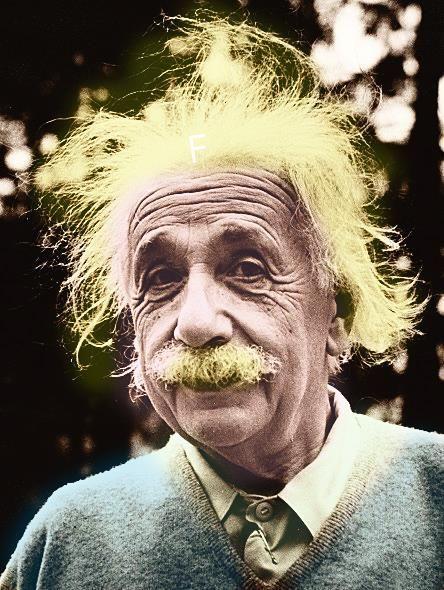 Manuale del Risveglio: Gli 8 precetti di Einstein