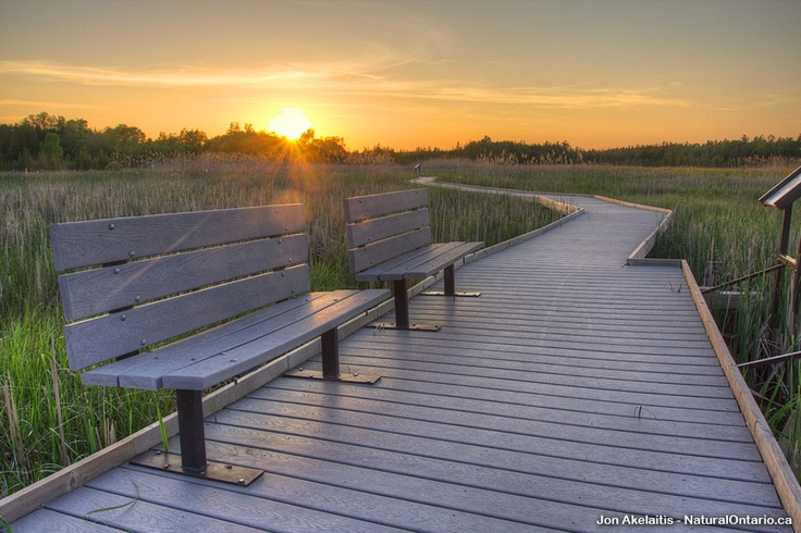 The Marsh Boardwalk Trail @ Presqu'ile Provincial Park #NatOnt #ExploreCanada #DiscoverOntario