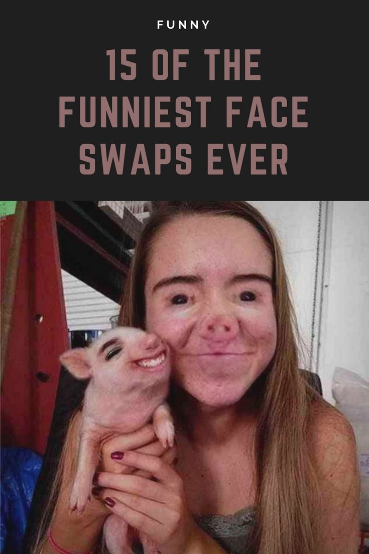 Image of: Funny Pictures 15 Of The Funniest Face Swaps Ever funniest faceswap humor memes Pinterest 15 Of The Funniest Face Swaps Ever funniest faceswap humor