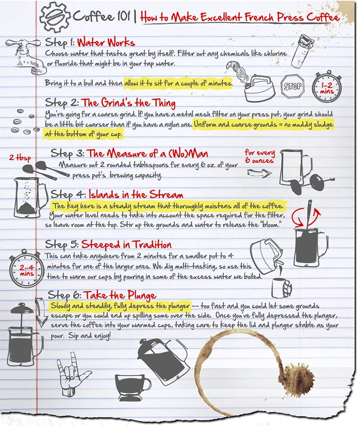 How to Make Excellent French Press Coffee infographic