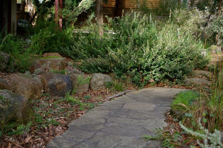 Castlemaine slate paths feature throughout this garden and age beautifully.