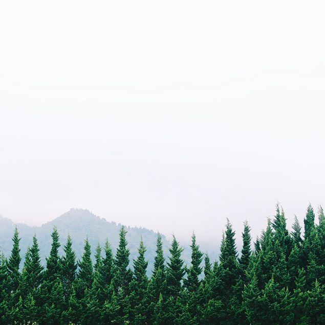 View from Candi Arjuna, Dieng - Central Java :)