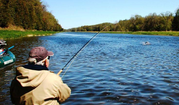 Fly Fishing in Fergus Ontario