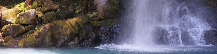 Rincón de la Vieja Volcano National Park Banner.jpg