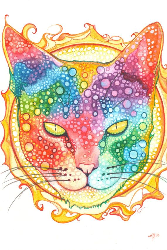 SUN CAT 4 x 6 print of detailed artwork in by DeepColouredWater, $5.00