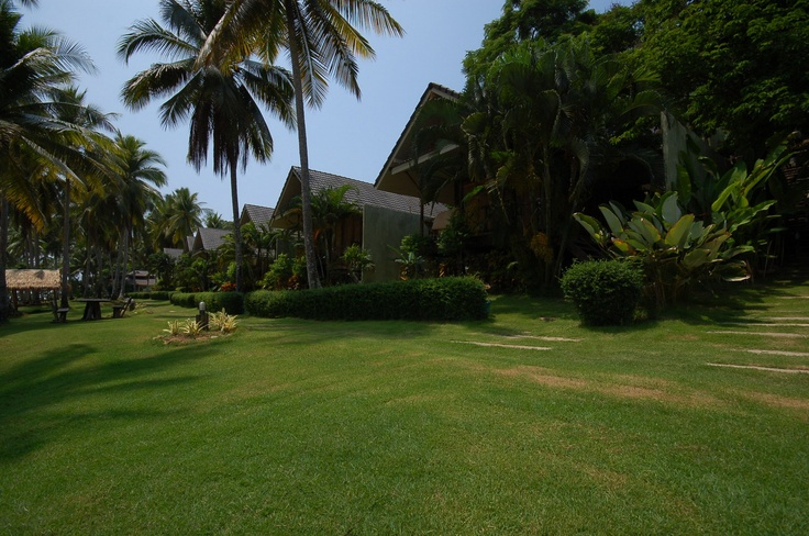 The row of Ocean Front Bungalows at Away Resort
