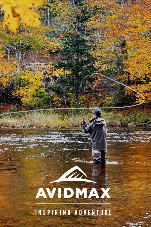 6 Tips For Epic Fall Fly Fishing Read Them All Today Fly Fishing Fly Fishing Shop Funny Fishing Tshirts