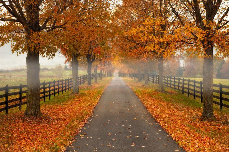 The Path: Shenandoah Valley, Virginia