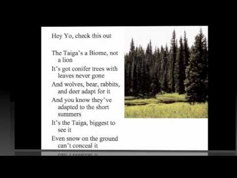 My Biome Song, Awesome for teaching kids about Biomes, mine were singing along and asking to play it over and over again!