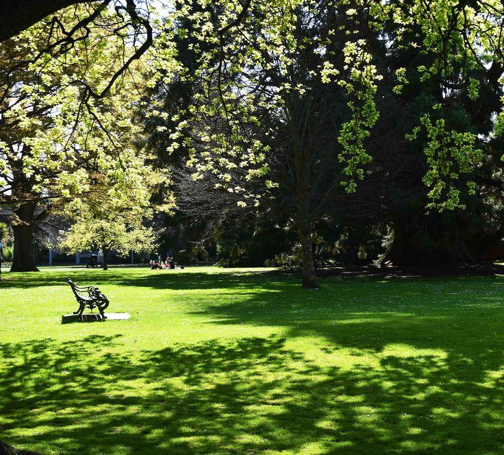 https://flic.kr/p/Ypp3e7   Botanic Gardens   Christchurch, New Zealand