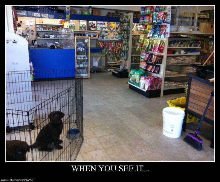 When You See It… http://ift.tt/15ETl4m