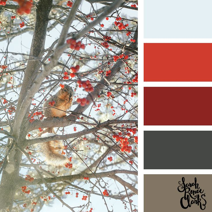 Red color scheme // Winter Color Schemes // Click for more winter color combinations, mood boards and seasonal color palettes at http://sarahrenaeclark.com #color #colorscheme #colorinspiration