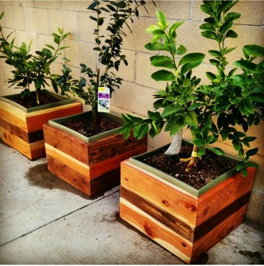 Large Redwood Planter Box For Tomatoes: My Landscaping Projects