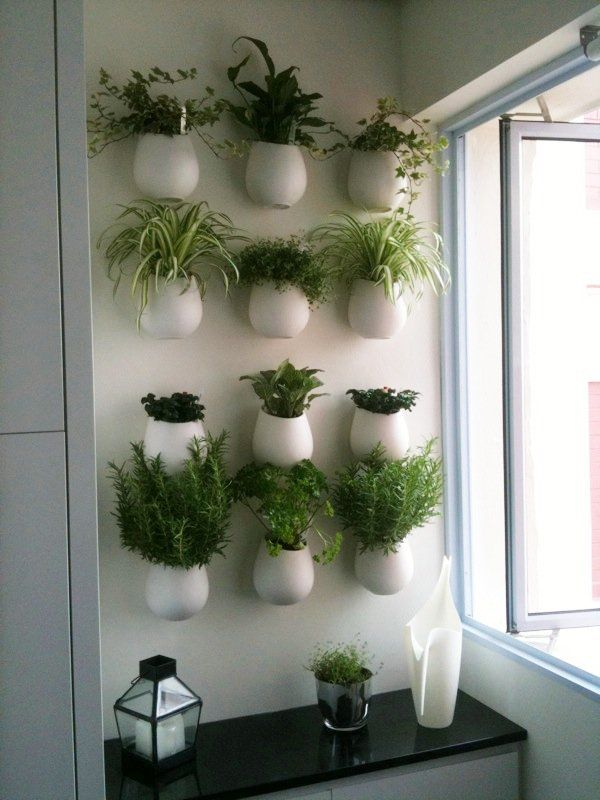 Kitchen Herb Wall. For me, probably in brick pots.