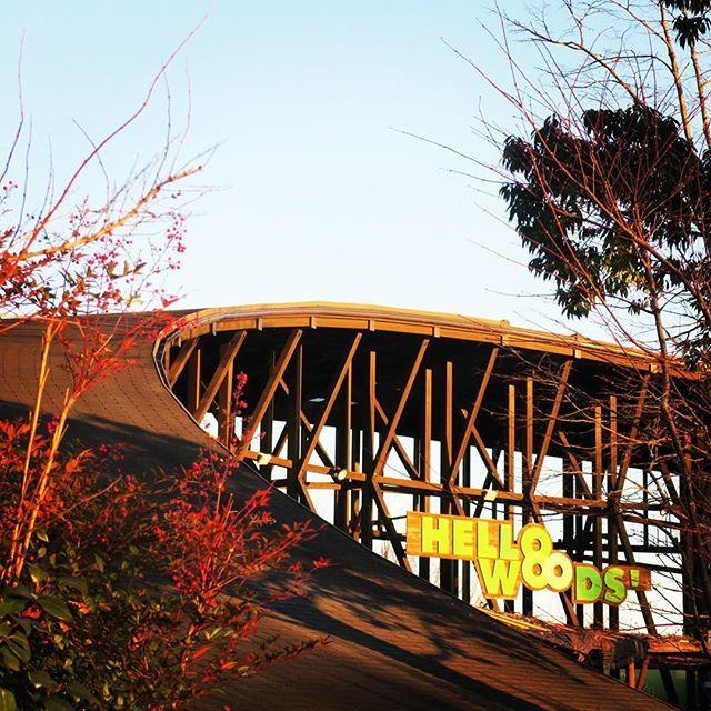 【twinring_motegi】さんのInstagramをピンしています。 《大きなアーチ型の屋根が特徴のハローウッズのクラブハウス。天気が良かった日には、きらきらした夕陽が差し込みます。 #ツインリンクもてぎ #twinringmotegi #ハローウッズ #hellowoods #森 #茂木 #栃木 #motegi #forest #tochigi #japan #tochigigram》