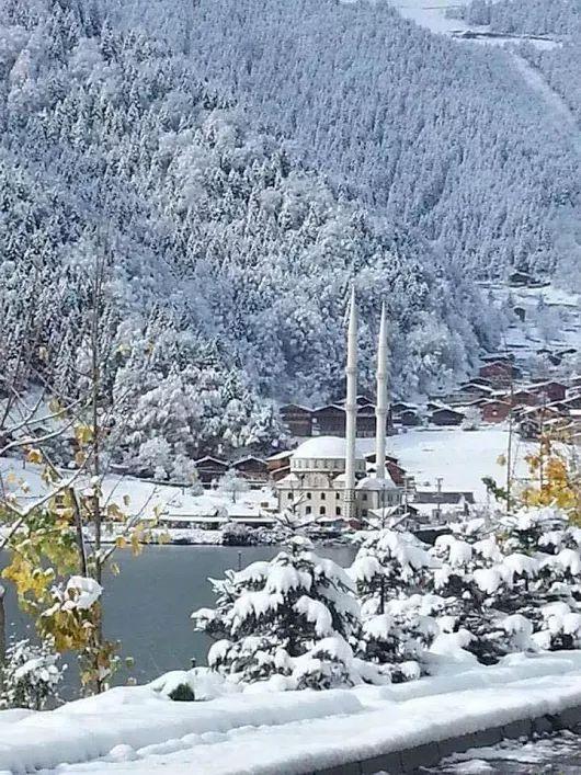 Trabzon Uzungöl / Harika Kar Manzarasi/