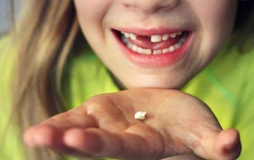 Des millions de parents gardent les dents de lait de leurs enfants. Quand vous saurez pourquoi, vous allez faire la même chose ...