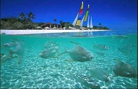 Amanpulo, PHL: Summer Vacations, Palawan Philippines, Vacations Spots, Pamalican Islands, Amanpulo Palawan, Beaches Vacations, Vacations Places, Travel Destinations, Virgin Islands