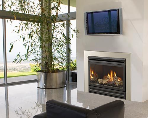 Regency Gas Fireplace.  Like this!