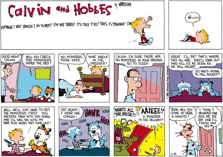 Calvin And Hobbes By Bill Watterson For November 24 1985