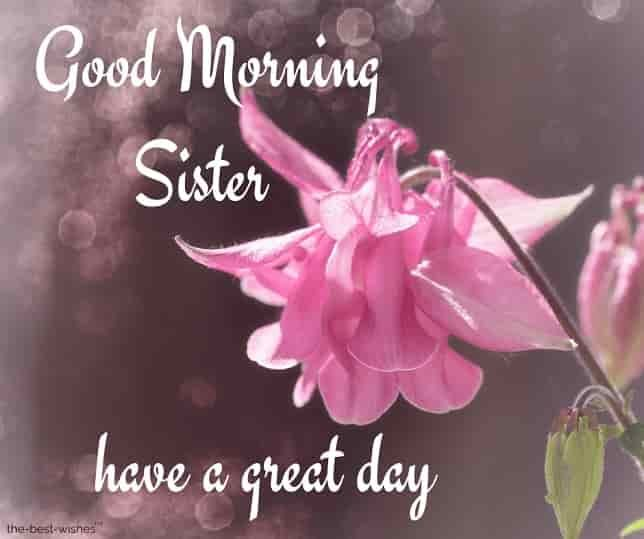 120 Lovely Good Morning Wishes And Greetings For Sister Good Morning Sister Good Morning Sister Quotes Good Morning Sister Images