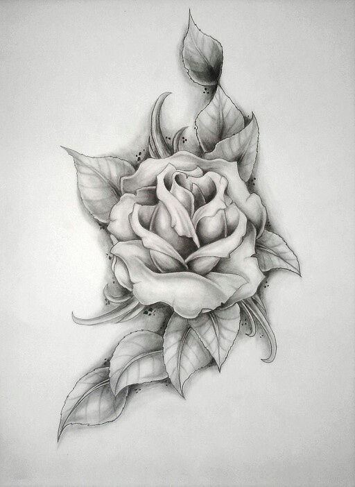 Rose sketch - Perfect for black and white tattoo.