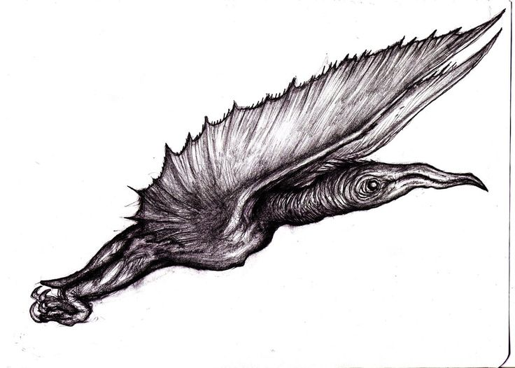 Pterosaur Monster/Stephen King - Mist Creature III by KingOvRats.deviantart.com on @DeviantArt